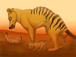 рисованное, животные, пустыня, тосманский, волк