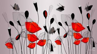 ��������� �������, ����� , flowers, �������, �����, ����