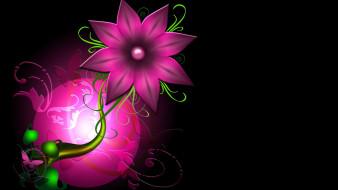 ��������� �������, ����� , flowers, ��������, ���