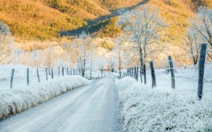 �������, ����, cades, cove, tennessee, hoar, frost, cold, sunlight, mountains, �����, ����, �������