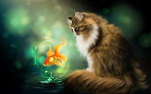 рисованное, животные, нelena, cat, золотая, рыбка, кот, fish