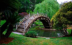 деревья, водоем, мостик