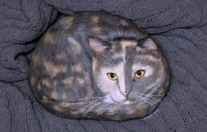 камень, кот, рисунок, ткань