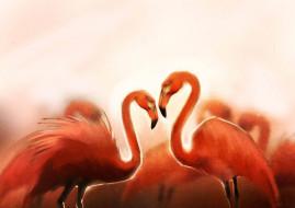 рисованное, животные, птицы, flamingo
