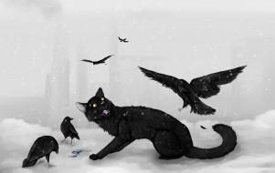 рисованное, животные, зима, вороны, кот