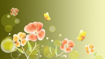 ��������� �������, ����� , flowers, �������, ���, �����