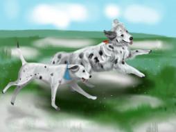 рисованное, животные,  собаки, собаки, трава
