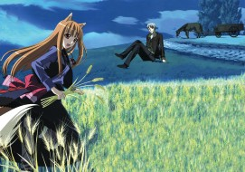 аниме, spice and wolf, девушка, парень, horo, craft, lawrence, spice, and, wolf, поле