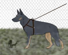 рисованное, животные,  собаки, собака, поводок