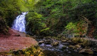 природа, водопады, лес, река, водопад
