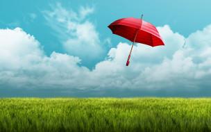 разное, сумки,  кошельки,  зонты, зонт, поле, небо, красный, зонтик