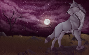 рисованное, животные,  собаки, собака, взгляд, фон, луна, звезды