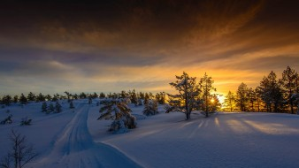 обои для рабочего стола 2048x1152 природа, зима, деревья, снег, тучи, свет