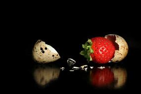 юмор и приколы, ягодка, скорлупа