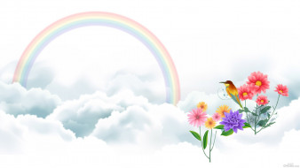��������� �������, ����� , flowers, ������, ������, �����, �����