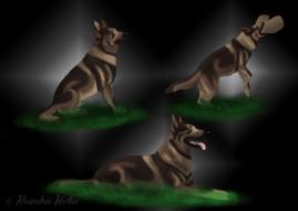 рисованное, животные,  собаки, взгляд, собака, друг
