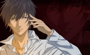 аниме, shinrei tantei yakumo, парень, арт, взгляд, рубашка