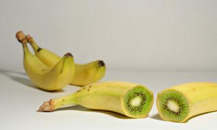 юмор и приколы, киви-банан