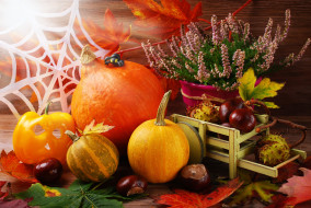 �����������, ��������, �����, ������, pumpkin, �����, ������, leaves, autumn, harvest, still, life