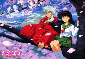 аниме, inuyasha, higurashi, kagome, весна, дерево, сакура, инуяша, кагоме