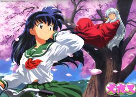 обои для рабочего стола 2500x1777 аниме, inuyasha, дерево, весна, кагоме, higurashi, kagome, инуяша