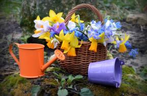 цветы, букеты,  композиции, лейка, весна, букет