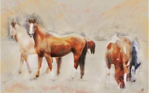 пасутся, поле, пастельные тона, кони, лошади, графика, живопись, картина
