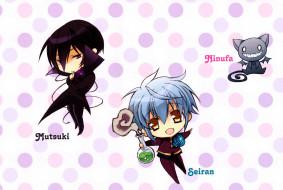 аниме, kiss of rose princess, котенок, черный, голубые, волосы, ninufa, mutsuki, kurama, seiran, asagi, kiss, of, rose, princess, aya, shouoto, art