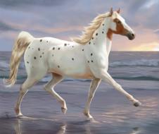 лошадь, фон, аллюр