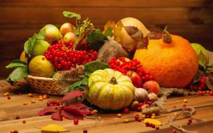 ���, ������ � ����� ������, �����, vegetables, still, life, pumpkin, harvest, autumn, �����, ���������, �����, ������