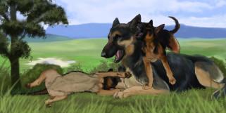 рисованное, животные,  собаки, собака, щенки