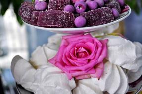 еда, конфеты,  шоколад,  сладости, роза, зефир, мармелад