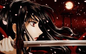 аниме, blood-c, девушка, меч